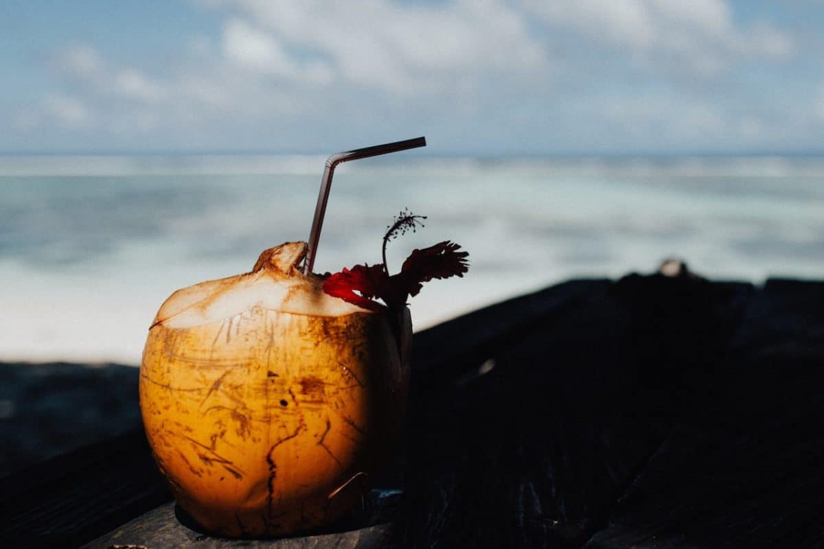 Croisiere Grenadines catamaran