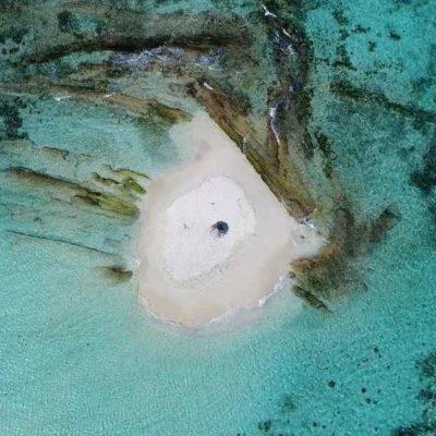 Plage aux iles Grenadines - Morpion Island